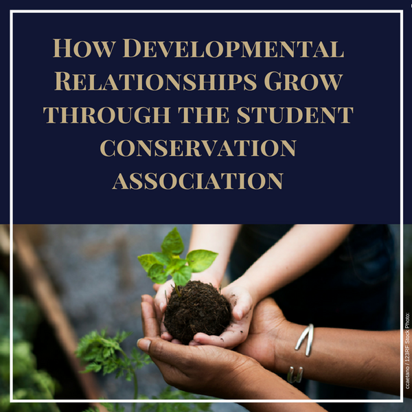 Developmental Relationships, SCA, programs for teens, sparks