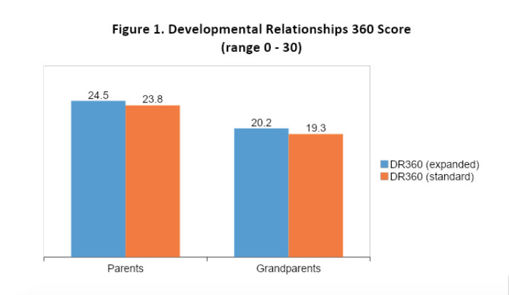 developmental relationships score