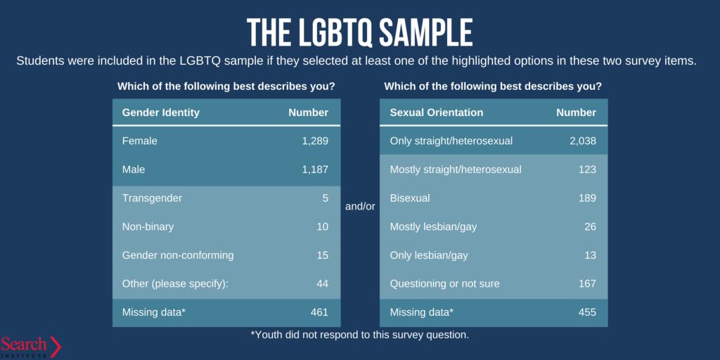 LGBTQ youth sample